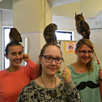 Owl Cafes – I'm so NOT into this trend!
