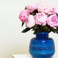 The next big thing: blooms inspired by Dutch still life paintings