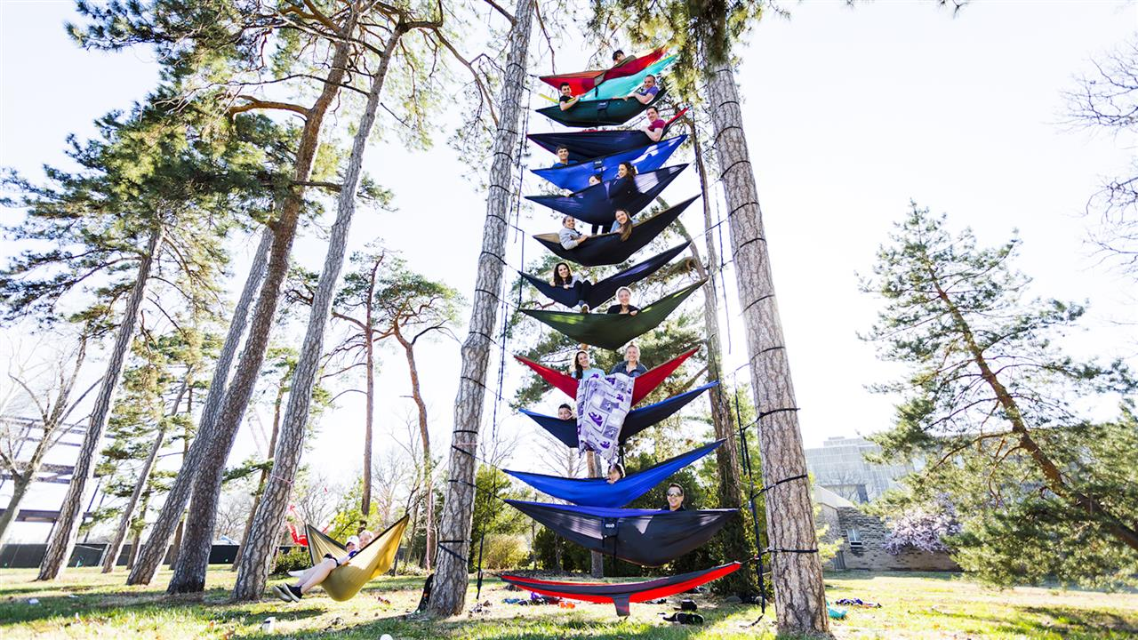 Hammocking Is So Popular It S Starting To Be Banned By