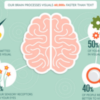 Visual Content Is The Most Important Factor In Optimizing Social Media