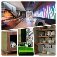 Top 5 Home Design Trends: Crazy Cool Specialty Spaces Indoor and Out
