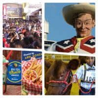 Nothing I LOVE More Than a State Fair: And Texas Is The Mother of Them All!!