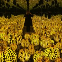 Washington DC Art Scene: Kusama and Blind Whino are Must-Sees